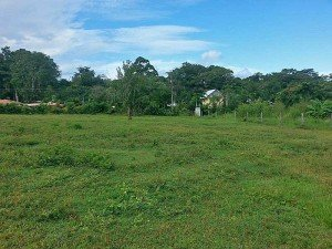 Pavones Lot for sale close to the surf