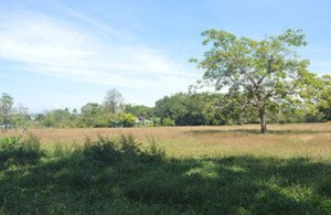 Pavones property for sale