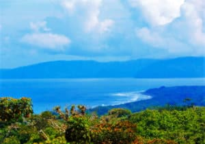 cuervito land for sale